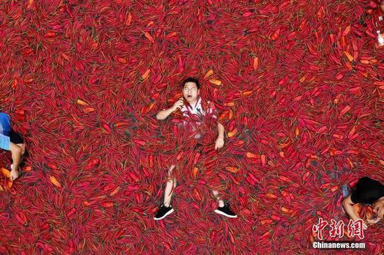 湖南宁乡炭河古城举办吃辣椒比赛,挑战者在铺满辣椒的巨型蓄水池中比拼吃辣椒。杨华峰 摄