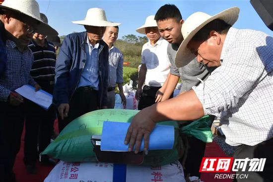 此次测产由来自中国水稻研究所、湖北省农业科学院、湖南师范大学、湖南水稻研究所的专家组成测产专家组,进行现场测产。