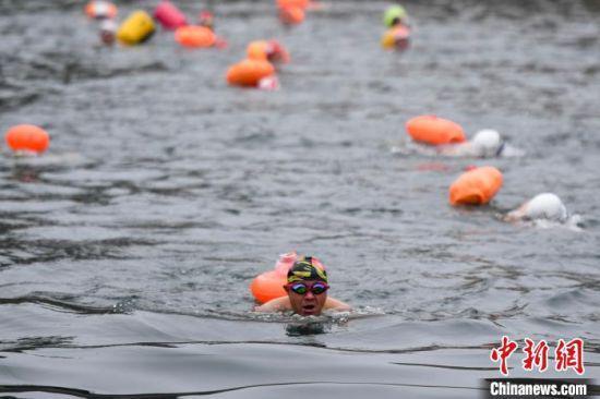 一位冬泳爱好者一马当先。 杨华峰 摄