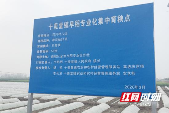 十美堂镇早稻专业化集中育秧点配一名行政负责人和两名技术员。