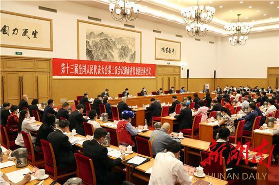 (5月21日下午,出席十三届全国人大三次会议的湖南代表团在驻地举行第一次全体会议。)