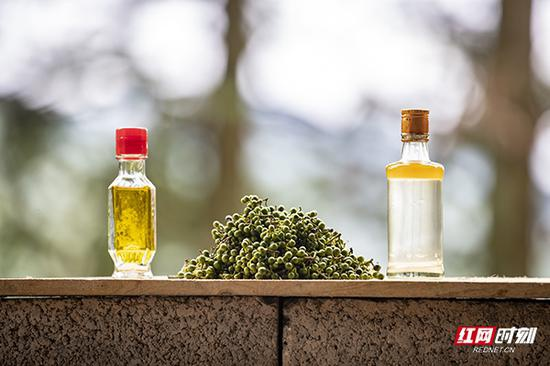 蒋爱文给记者展示新熬制的山胡椒油。他说,新熬制的一小瓶纯山胡椒油可以兑出市场上50瓶左右的山胡椒油。