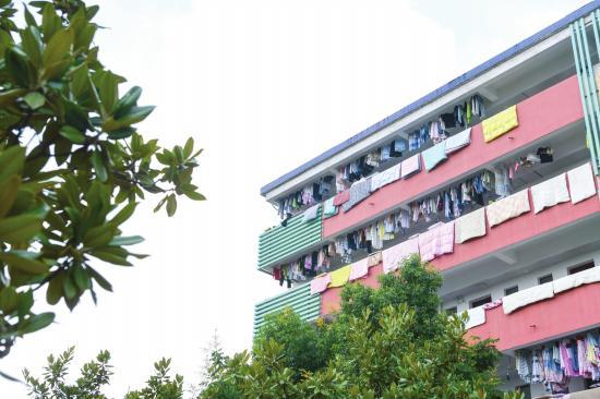 湖南工商大学返校的学生正在宿舍楼的走廊上晾被子。组图/记者杨旭