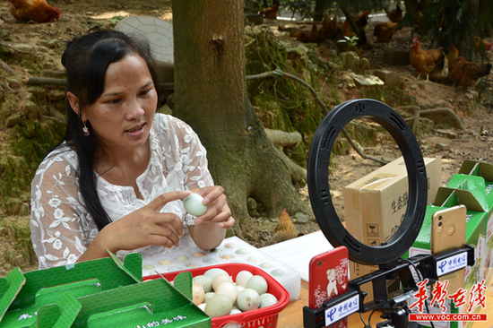 刘柏莲在直播带货土鸡蛋。