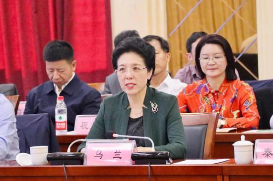 湖南援藏工作座谈会