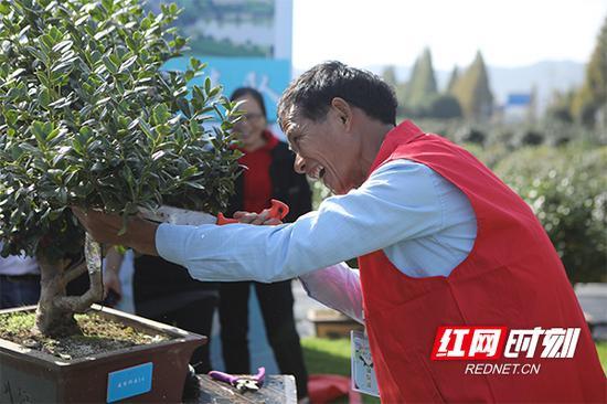 2020年10月23日,长沙雨花区首届园艺技能人才比武大赛在跳马镇育景园举行。