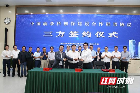 5月31日,中国油茶科创谷建设领导小组办公室、中铁十四局集团有限公司、湖南兰亭控股有限公司在长沙正式签约中国油茶科创谷建设合作框架协议。