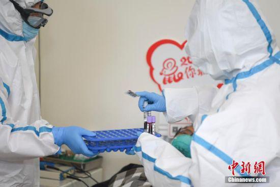 医护人员收集血液样本。 杨华峰 摄
