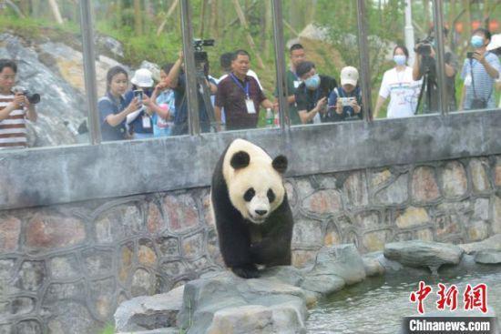 http://awantari.com/wenhuayichan/152352.html