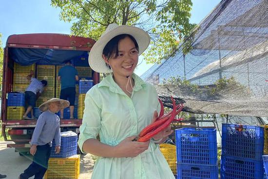 汝城县大坪镇火红辣椒带来红火生活。