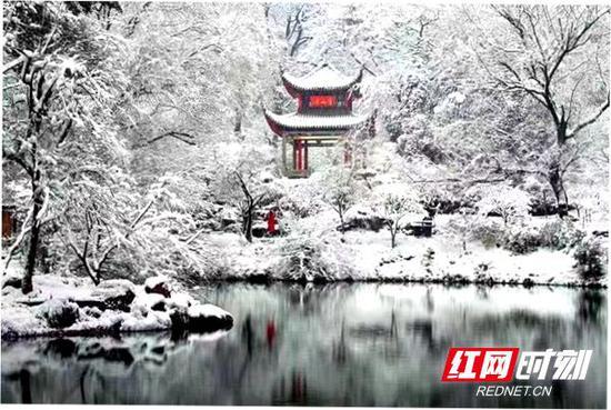 爱晚亭雪景。