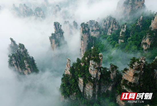 ▲雨洗青山,云绕峰峦,像一幅幅淡墨轻烟的绝美画卷。摄影/伍文 张潘