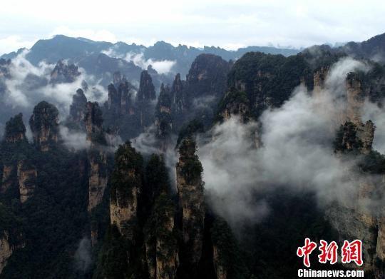 航拍张家界武陵源风景区连绵峰林。资料图 吴勇兵 摄