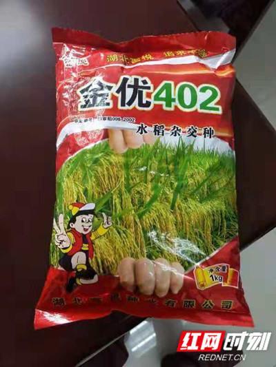 假冒的金优402种子。