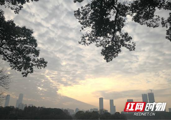 今日天气晴朗,但明显感觉有些雾蒙蒙。湖南省气象局供图