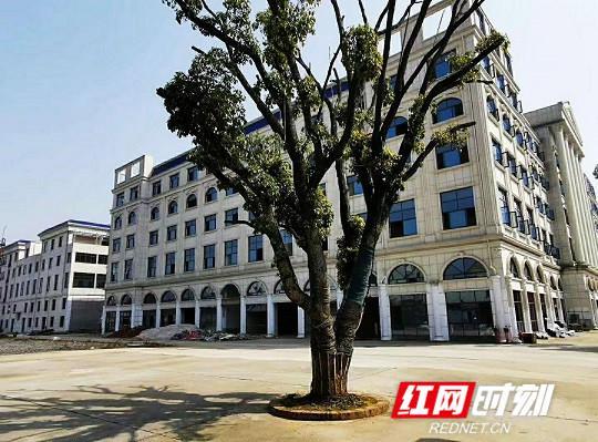 长沙市湘军高级中学校园一角。