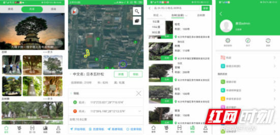 湖南古树名木信息管理系统安卓版APP界面截图。