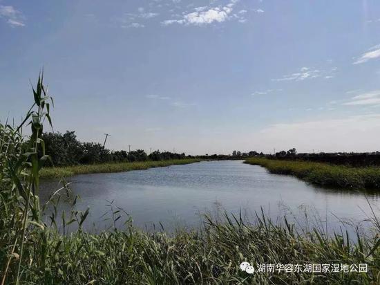 图源:湖南华容东湖国家湿地公园公众号