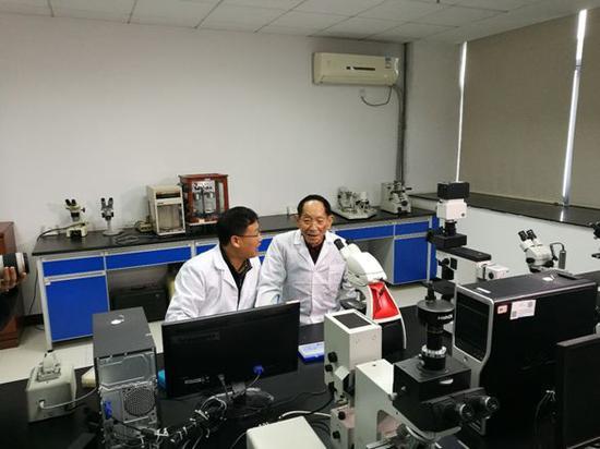 杂交水稻国家重点实验室副主任吴俊摄