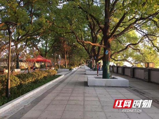 湘江东岸防洪综合改造项目全长约5.1公里,堤防防洪标准为200年一遇。