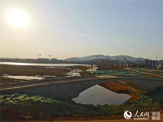清水湖公园已初具规模。实习生 刘清心摄