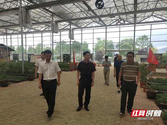 大坪镇领导班子与企业、种植大户参观产业园