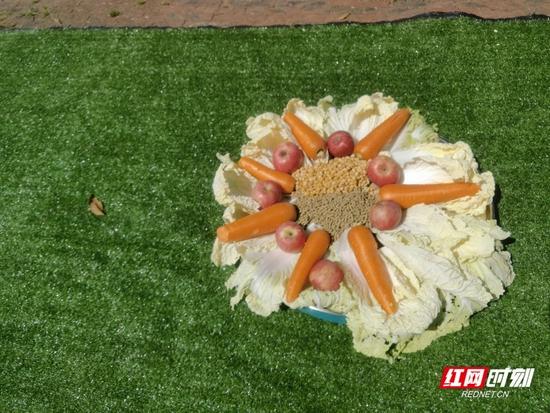 为了庆祝双胞胎小河马百天亮相,园区的饲养人员精心为河马宝宝准备了以水果和蔬菜为主的特色蛋糕。