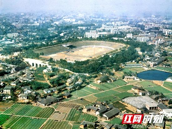 1978年10月,航拍的贺龙体育馆,它的东南边都是菜地和农舍。