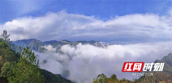 郴州市桂东县职业教育中心学生郭伟城作品《飞跃》。