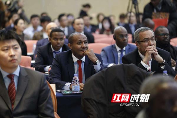 参会嘉宾聆听发言。
