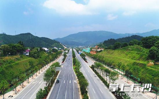 道吾山路对接金阳大道。