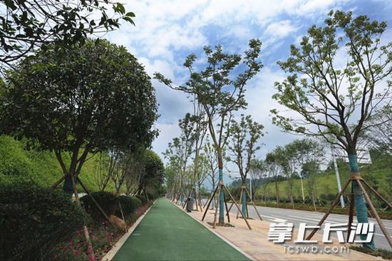"""生态优美、功能齐全的""""绿色景观长廊""""。"""