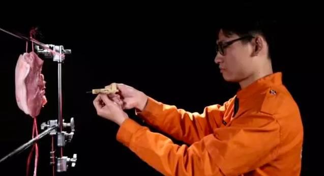 用一块猪肉来模拟人体,两枚钢针深深地插入到猪肉里面,浅的一根针插入猪肉,深的一枚插入达到4公分。