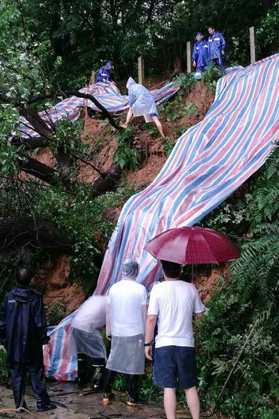 (山体滑坡、树木倒伏的情况已经得到妥善处置。)