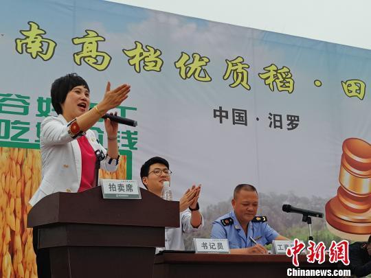 全国首次优质稻田间拍卖活动10月10日在湖南汨罗举行。  王昊昊 摄