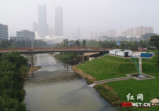 龙王港基本达到地表五类水标准。