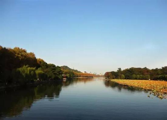 每年到了10、11月的时候,金井湖畔的青翠便换了颜色, 绿色渐黄渐红,斑驳的色彩落在湖面,拘于平滑如镜的山水画卷。