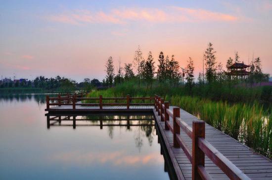 秋天的洋湖还可以望见满眼的碧色,绵延至湘江水面。