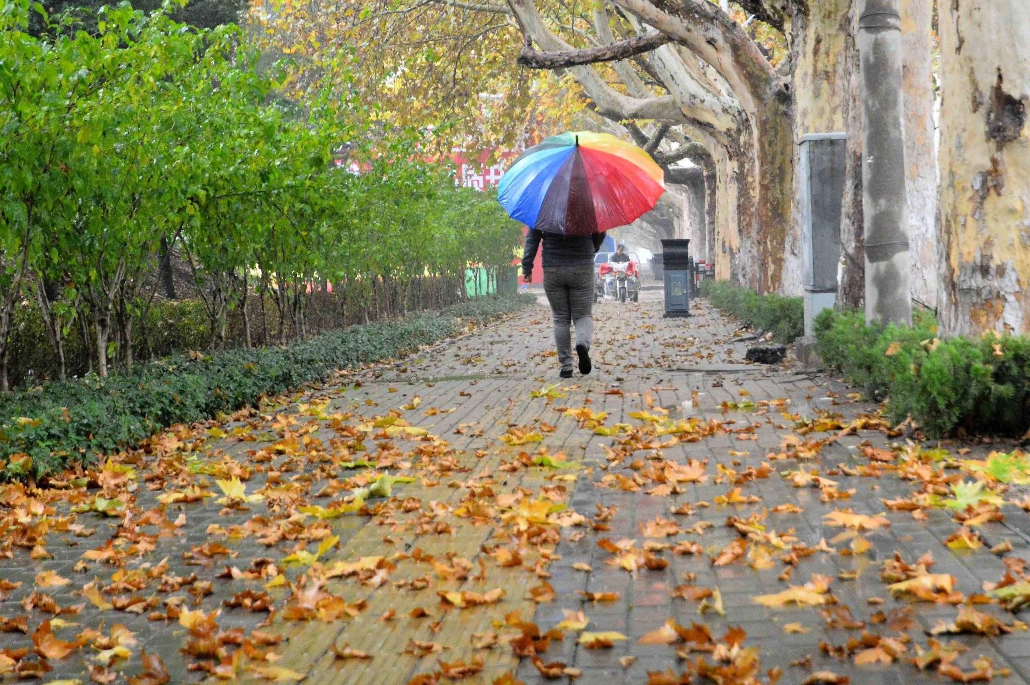 湖南新一轮降雨全面来袭 15日局地有暴雨