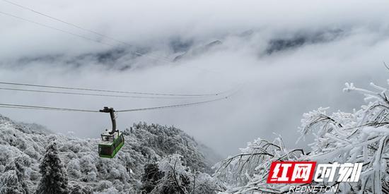 冰雪世界中,索道成为南岳中心景区一道亮丽的风景线。