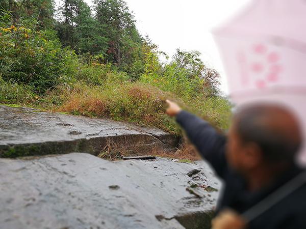 据颜石保介绍,他弟弟颜昌勇是在屋后的山坡上自杀的。 澎湃新闻记者朱远祥 图