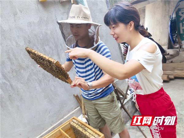 庞思(右)与贫困群众一起查看蜜蜂生长情况。