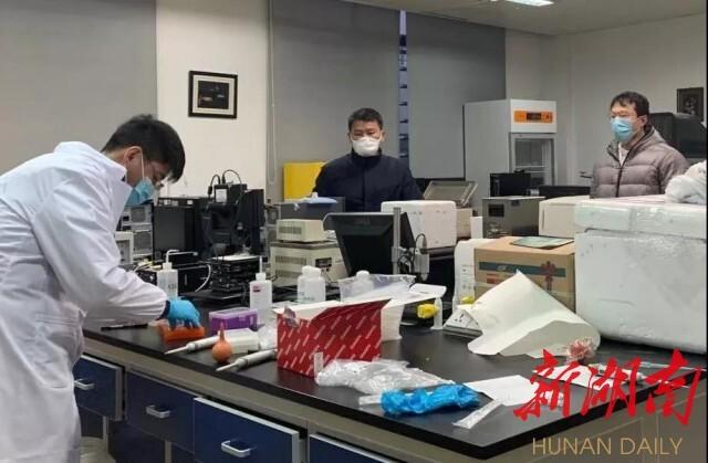 """谭蔚泓院士团队主持研发""""家庭简易式新型冠状病毒感染检测技术与试剂盒"""",已开展临床试验。资料图片"""
