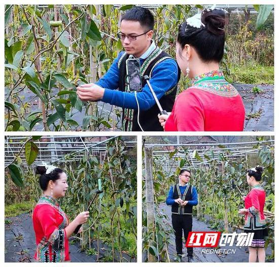 """3月17日,""""乡野丫头""""石秋实正在户外直播,推介农产品。(图片由受访者提供)"""
