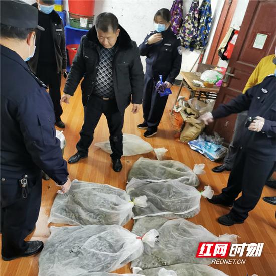 嘉禾县森林公安局民警查获的蛇类、竹鼠。