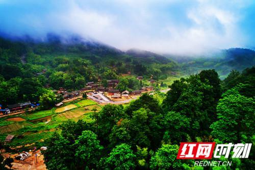 崇木凼村。