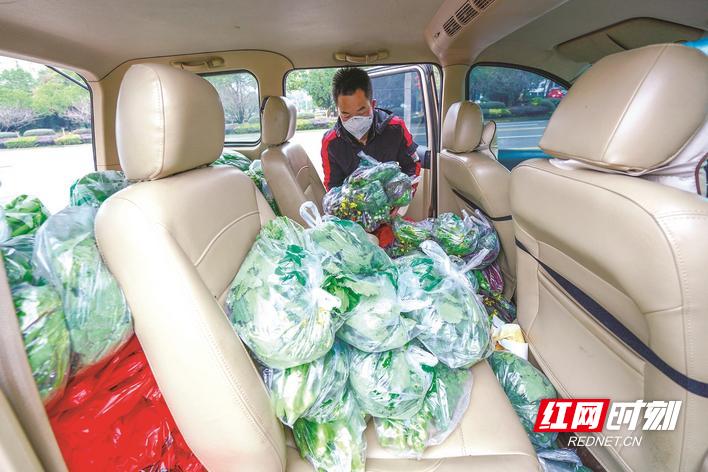每次派送前,王紫豪都会将蔬菜都打包好,便于领取。章帝 摄