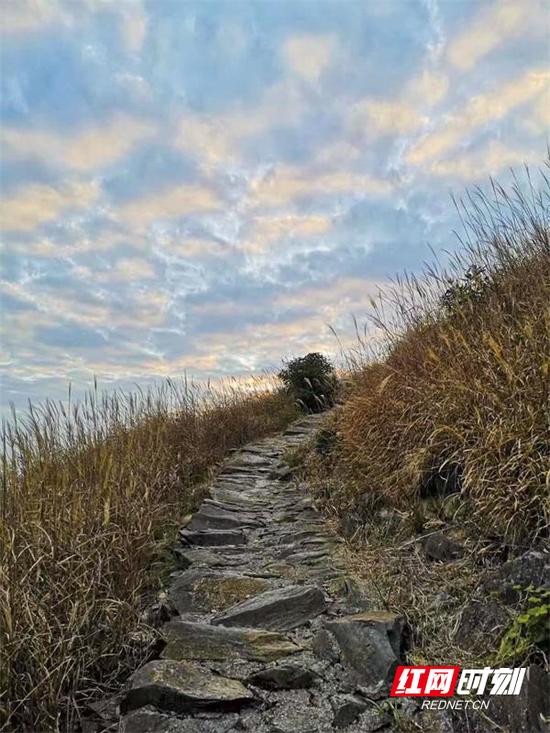 郴州市桂东县职业教育中心学生胡奕作品《天路》。