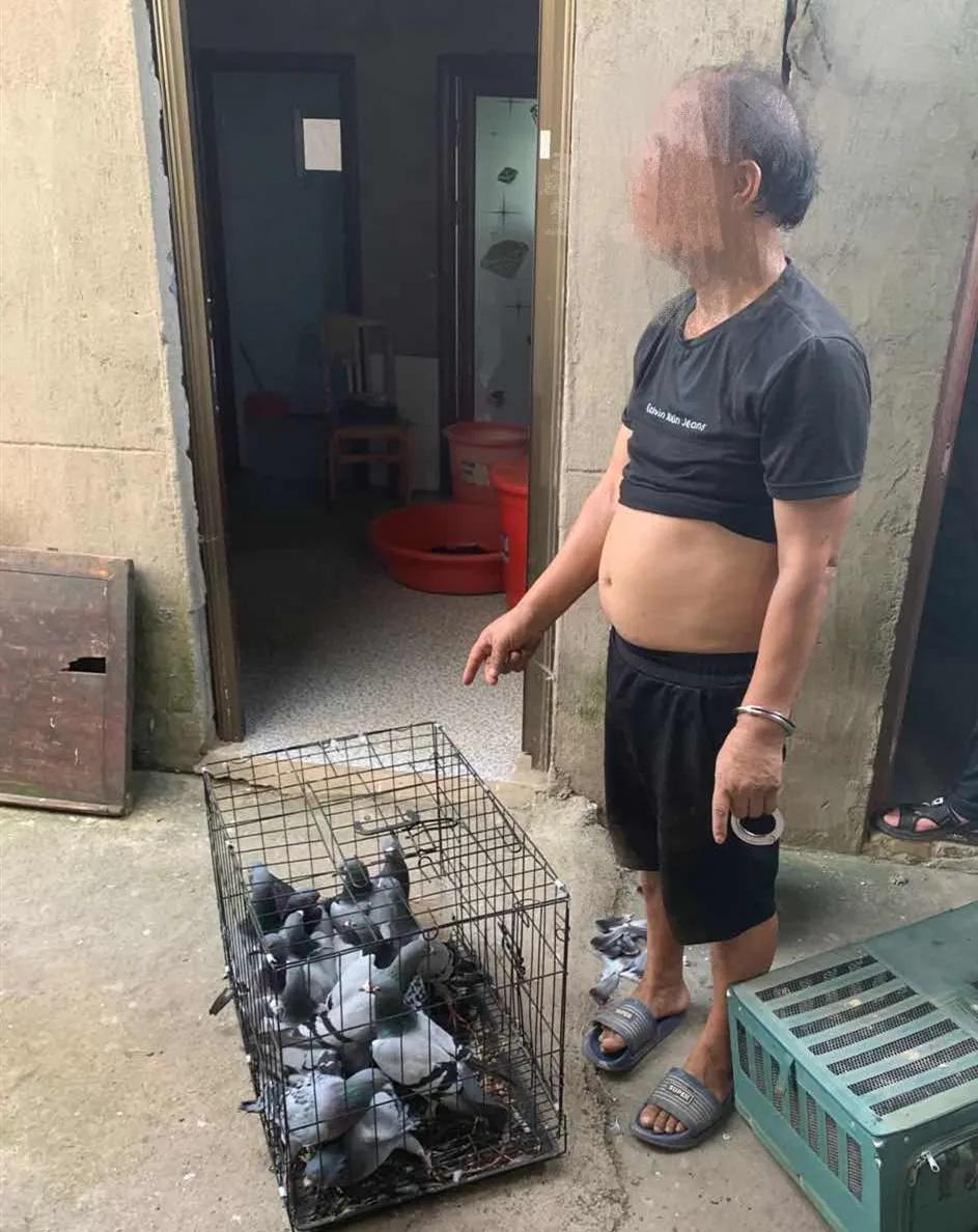 ▲嫌疑人吴某、胡某军被抓获归案