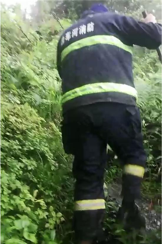 湘西孤寡老人上山挖竹笋失联48小时,干群携手将其寻回